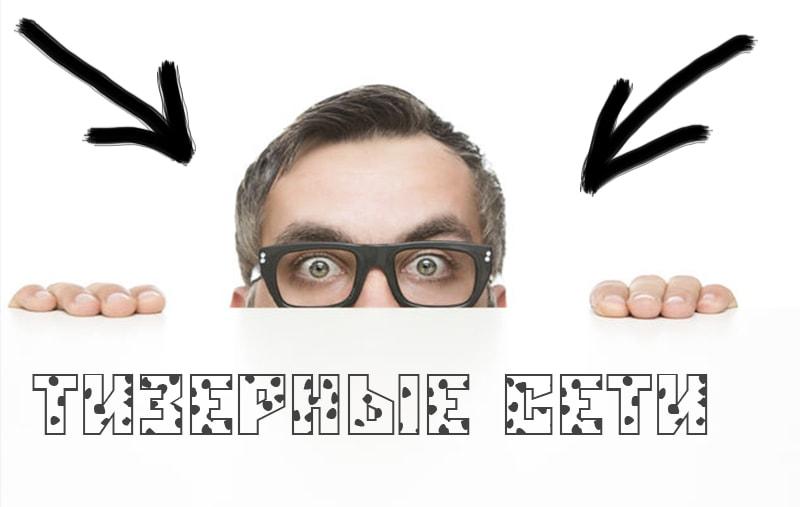 Тизерные сети: какую выбрать?