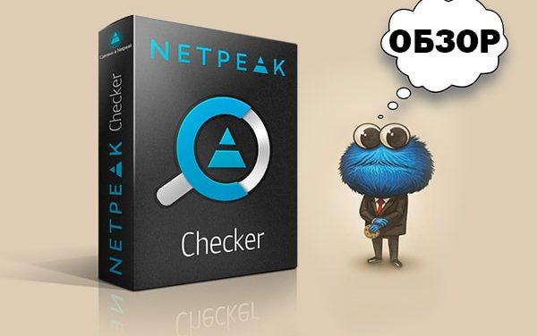 Обзор Netpeak Checker: многофункциональный инструмент для массового анализа сайтов